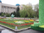 museum and tulips