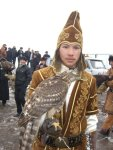 falcon-and-brown-costume