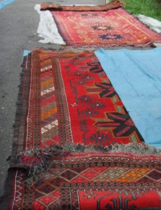 carpets inside yurt