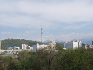 Eastern skyline and tower