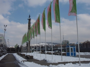 green and pink flags