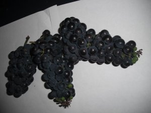 3 grape clusters